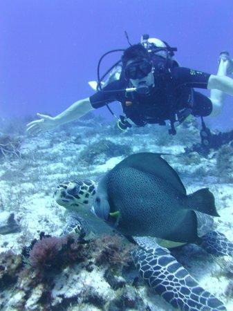 NIrvana Diving School : Matt
