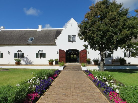 Steenberg Hotel: This looks on to the restaurant entrance