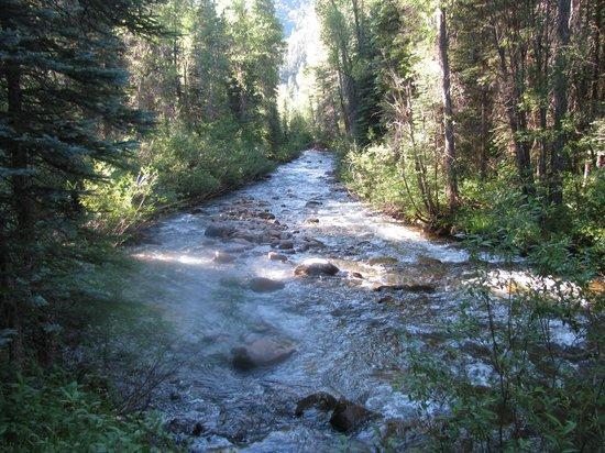 The Cabins at Bear Creek: Bear Creek
