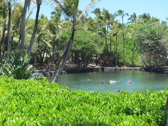 Hale Moana Bed & Breakfast: Hot Ponds (ca 10 minutes away)