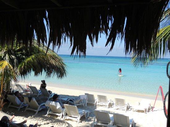 Paradise Beach Hotel: Beach Fun!!!