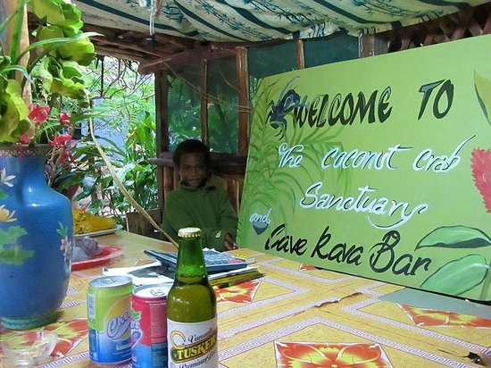 Cave Kava Bar and Coconut Crab Sanctuary: Best kava in town