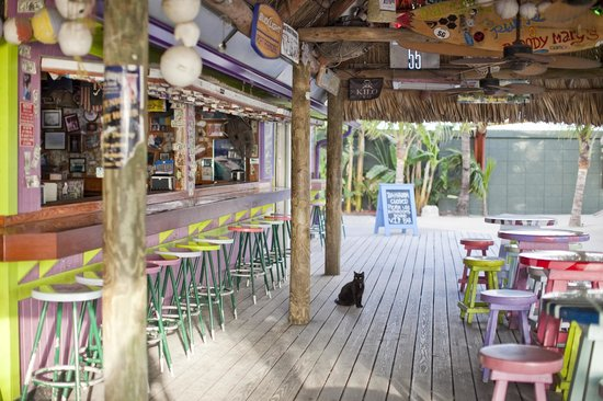 Square Grouper Tiki Bar Jupiter 2018 All You Need To Know Before Go With Photos Tripadvisor