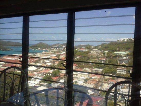 The Green Iguana Hotel: Great view....no balcony :(