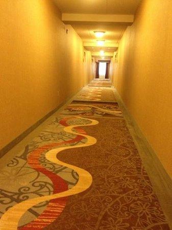 Homewood Suites by Hilton Toronto Airport Corporate Centre: hallway