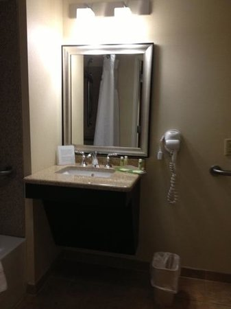 Holiday Inn Express Hotel & Suites Williamsport: vanity