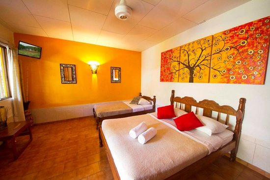 Photo of Buddha House Boutique Hostel Jaco