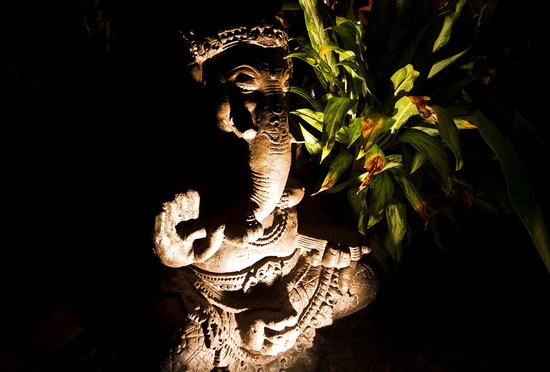 Buddha House Boutique Hostel: GANESHA