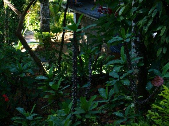 Little Folly: vu du jardin