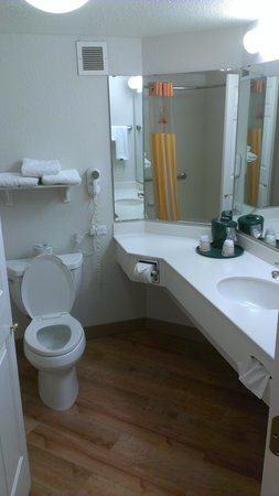 La Quinta Inn & Suites Panama City: Basic clean bathroom with hair dryer