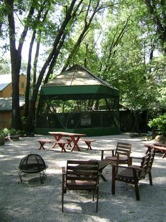 Cedar Lodge Motel: Cedar Lodge Aviary / Picnic Area