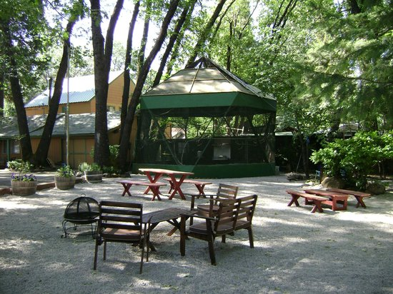 Cedar Lodge Motel: Cedar Lodge - Aviary & Picnic  Area
