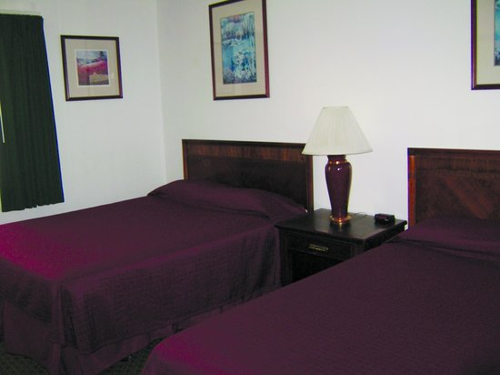 Cedar Lodge Motel: Cedar Lodge  Two Queen Beds