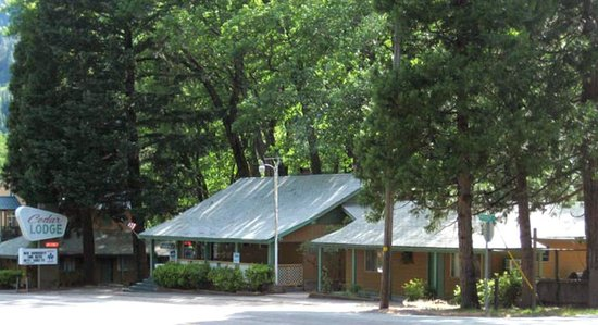 Cedar Lodge Motel: Cedar Lodge Main Entrance