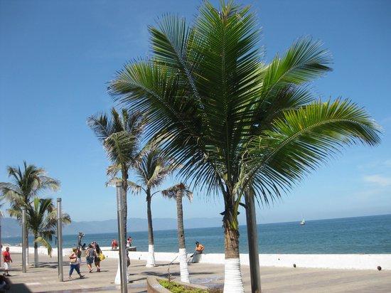 Puerto Vallarta's El Malecon Boardwalk: The view of Malecon