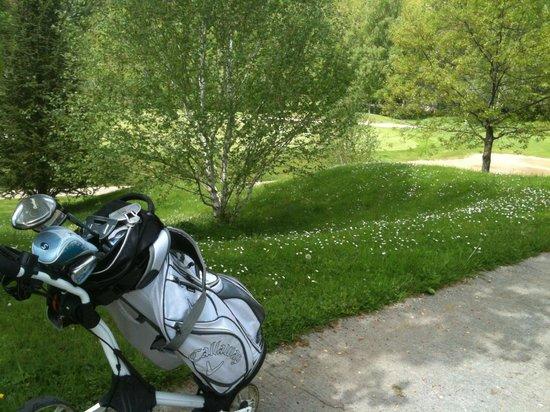Domaine du Val de Sorne : Les fleurs de mai tapissent les pelouses