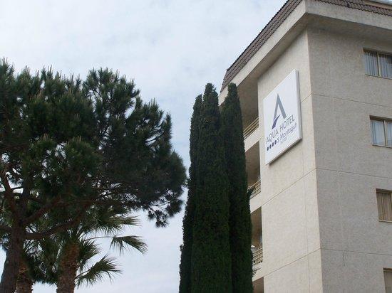 Aqua Hotel Montagut : vu de la piscine