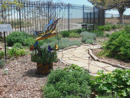 Amarillo Botanical Gardens: Butterfly Garden