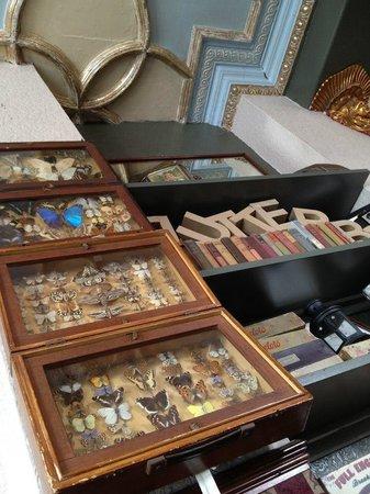 Butterfly Cabinet: Cute