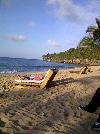 Bamboo Beach: Serene