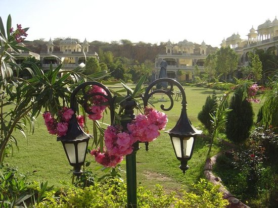 The Udai Bagh: Lovely Flowers