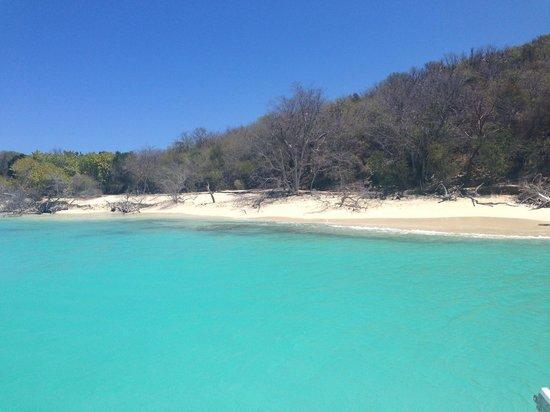 Buck Island Cove: Buck Island Beach