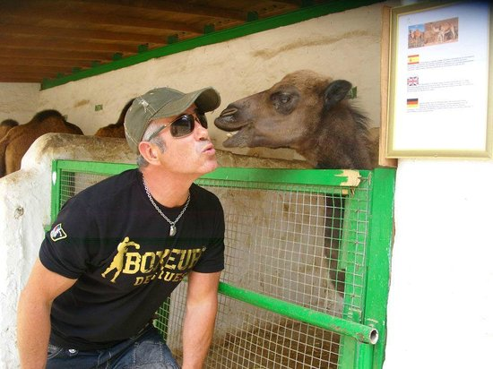 Animal Encounters -  Escape Outdoor & Adventures - Private Tours: Explore Gran Canaria-Charly