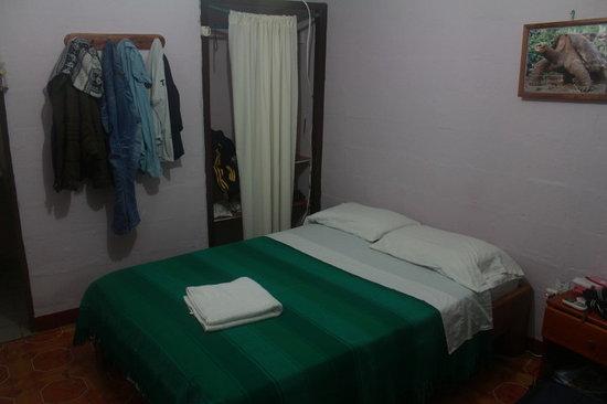 Darwin Hostel : Room
