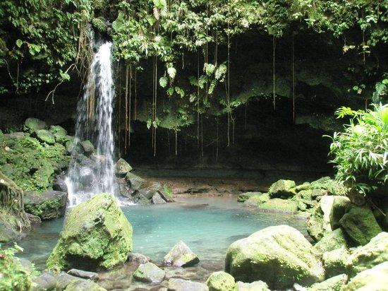 Emerald Pool Nature Trail: Beautiful Emerald Pool