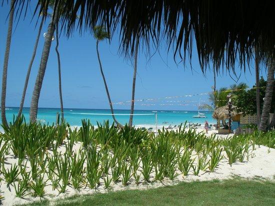 Grand Palladium Bavaro Suites Resort & Spa : the view during lunch