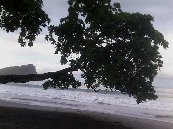 Hotel Karahe: Vista de la playa, ni bien salis del complejo. DE LUJO