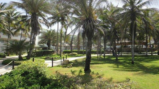SUNSOL Isla Caribe: area verde del hotel