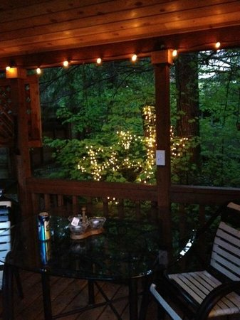 BaseCamp Cottages: Back patio with lights on in the evening