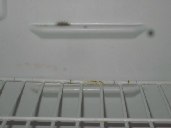 Inn at Calafia Beach : mold in the refrigerator...and very smelly!