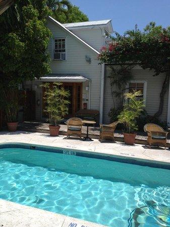 Heron House : Pool direkt vor der Tür