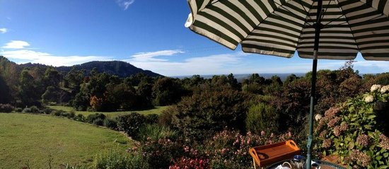 Barefoot Springs B & B: The view at breakfast