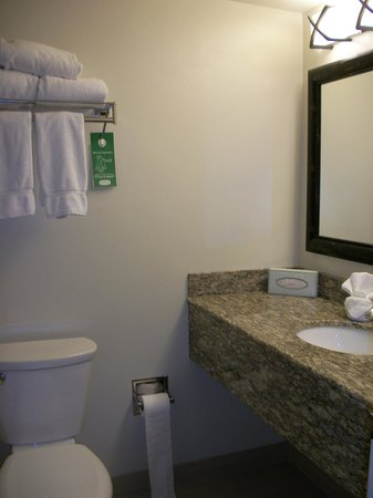 Crystal Inn Hotel & Suites St. George: Tiny Bathroom