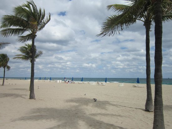 BEST WESTERN PLUS Oceanside Inn: Fort Lauderdale Beach near the hotel