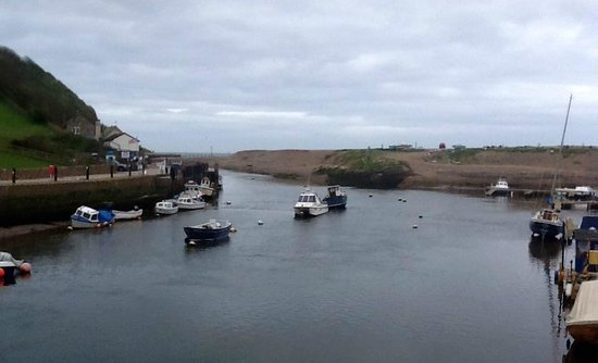 The Harbour Inn: The Estuary