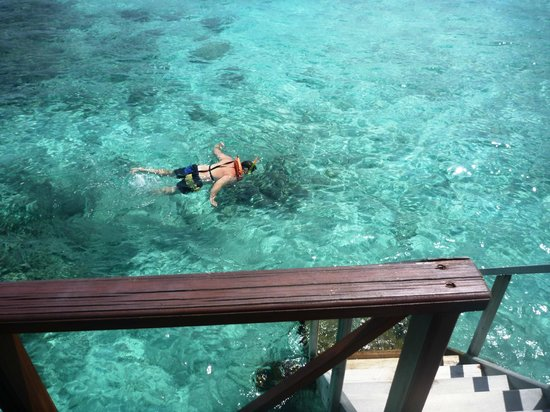 Thulhagiri Island Resort: my baby snorkeling, taken from our over-the water room