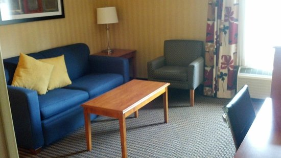 Comfort Inn & Suites Alexandria: living room