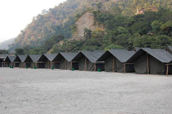 Camp Riverside Rishikesh: Camp