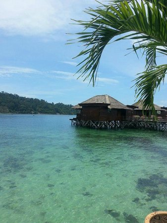 Gayana Eco Resort: palm villa