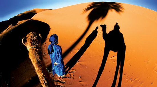 Camel Bivouac Merzouga: getlstd_property_photo