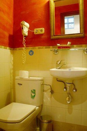 Apartamentos Mayor Centro : baño apartamento terraza