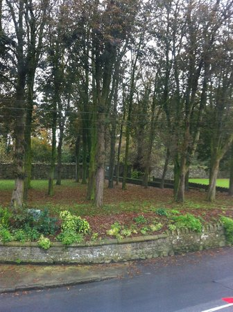 Step House Hotel: Borris Manor House - beautiful and great gardens and history