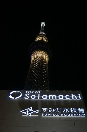 Sumida, Japan: Tower from base