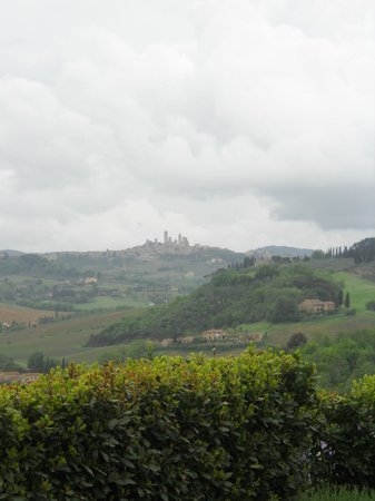 Tours in Tuscany - Private Tours: View From The Winery