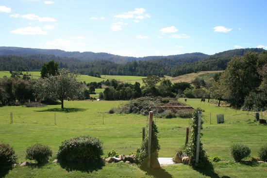 Goulds Country Guest House: view