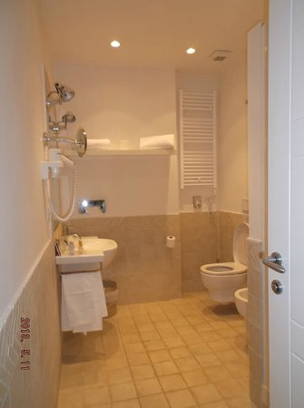 Ripetta 25: large bathroom with shower..nice hot water!